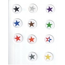 Taekwon-do Star badges